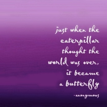 butterfly-change-picture-quote